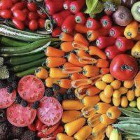 fruits-displayed